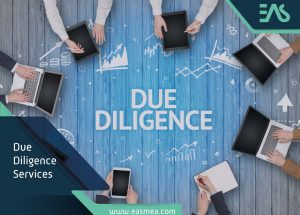 Due Diligence Services In Dubai Uae
