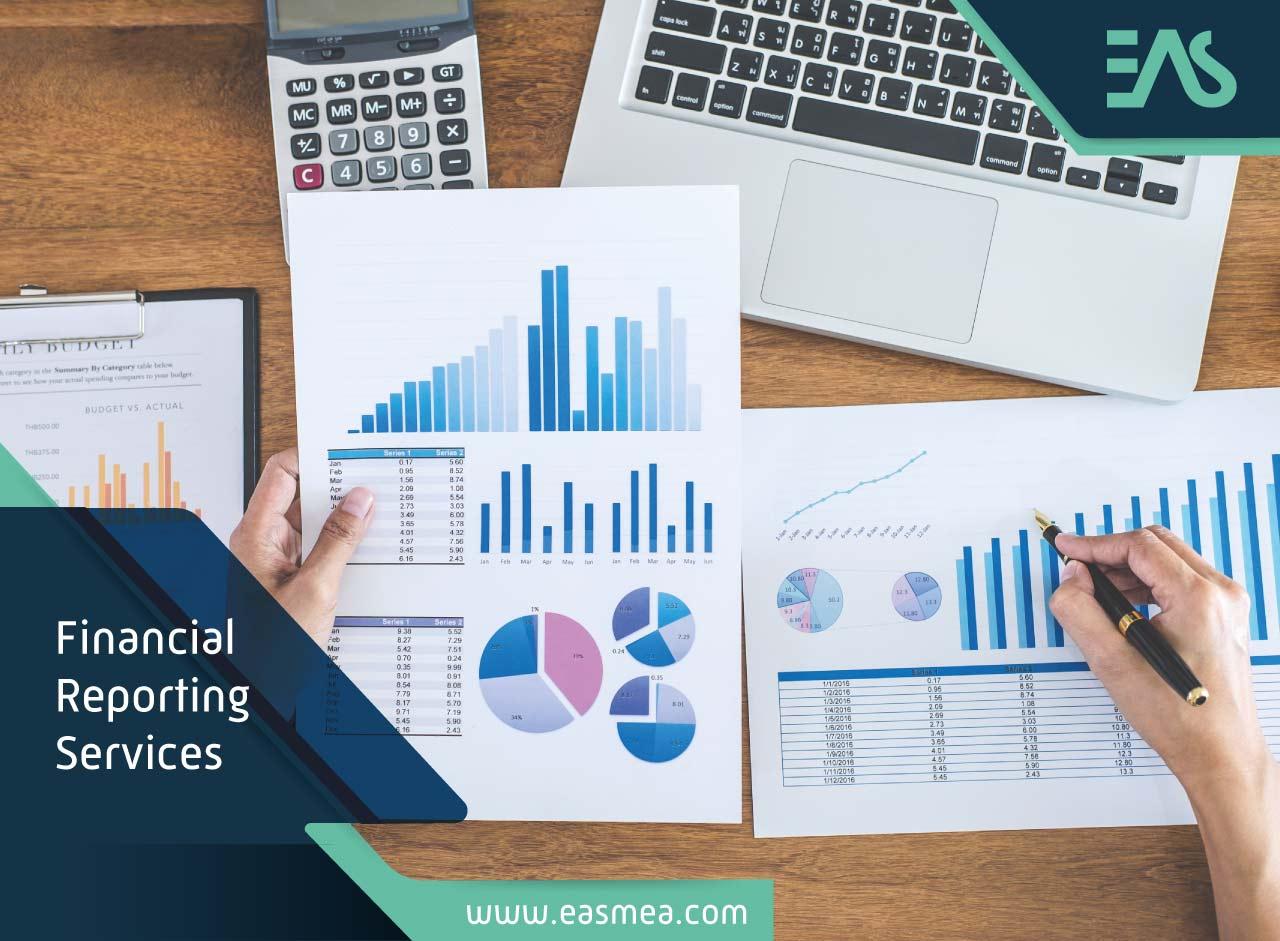 Financial Reporting Services In Dubai Uae